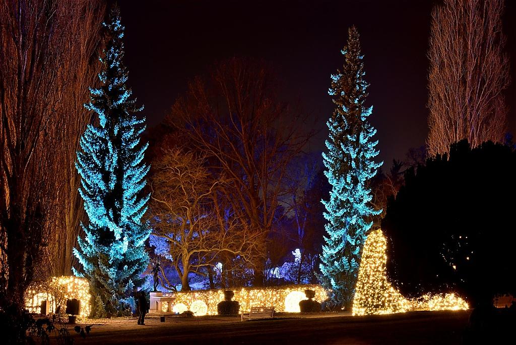 Steglitz Botanischer Garten Christmas Garden 2016